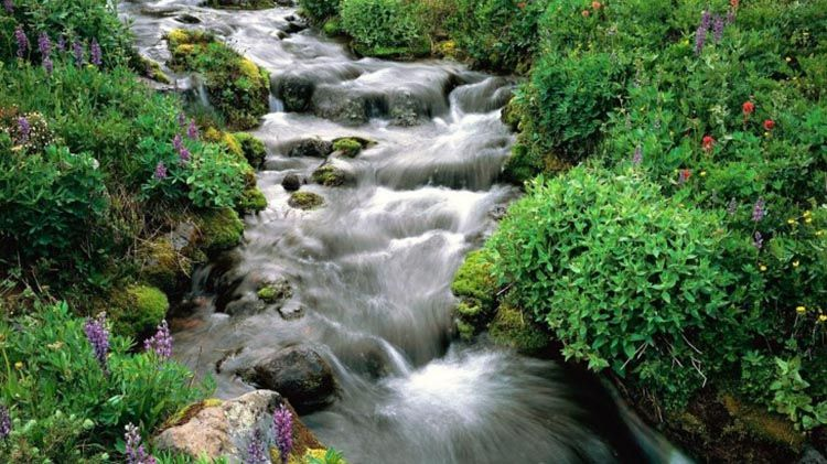 El-agua-en-el-paisaje