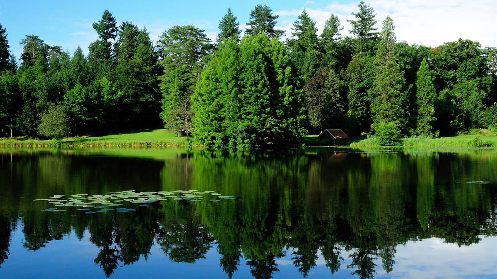 France-nature-landscape-trees-greenery-lake-water-reflection_1600x900
