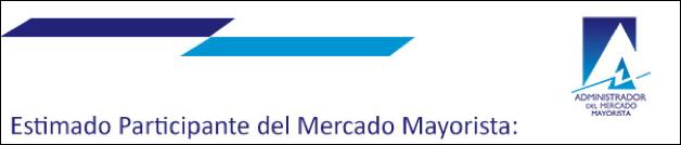 Cintillo Mercado Mayorista